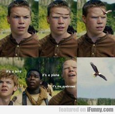 The maze runner, what has this fandom come to Maze Runner Funny, Maze Runner Cast, Maze Runner Movie, Gally Maze Runner, Frypan Maze Runner, Maze Runner Quotes, Maze Runner Trilogy, Maze Runner Series, Narnia