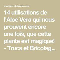 14 utilisations de l'Aloe Vera qui nous prouvent encore une fois, que cette plante est magique!  - Trucs et Bricolages