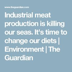 Industrial meat production is killing our seas. It's time to change our diets | Environment | The Guardian