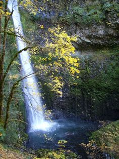 #91 Eagle Creek Trail to Wahtum Lake: The second most famous and perhaps most enjoyable hike in the Gorge. Eagle Creek Trail is second only to Multnomah Falls in popularity, being the hike with more waterfalls than any other in the Columbia Gorge. It is also one of the most flexible, offering day, overnight, and extended backpacking options. the eagles, eagl creek, lake