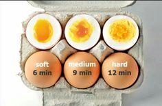 Egg Maturity level