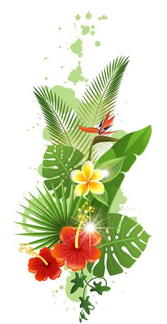 Green coconut leaves PNG and Clipart Tropical Flowers, Hawaii Flowers, Art Floral, Watercolor Flowers, Watercolor Paintings, Coconut Leaves, Deco Originale, Flower Clipart, Bunt
