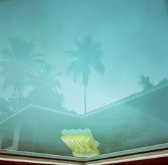 photograph of pool by Karine Laval at Bonni Benrubi Gallery David Hockney, Edward Hopper, Pop Art Movement, Laval, Tropical, Fine Art Photography, Artwork, Illustration Art, Landscape