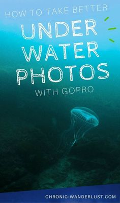 Underwater Camera - Photography Tips You Have To Know About Underwater Photography, Photography Tips, Travel Photography, Photography Couples, Street Photography, Landscape Photography, Portrait Photography, Nature Photography, Fashion Photography