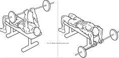 Bent-Arm-Barbell-Pullovers | Read and see more here http://bit.ly/1iILaKU