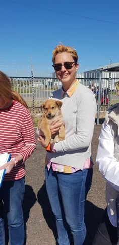 We were so impressed with the turn out! 59 dogs and 3 cats were treated and 23 pets have been booked to be sterilized. Pets, Books, Style, Animals And Pets, Livros, Libros, Book, Book Illustrations, Stylus