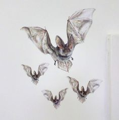Bat wall sticker halloween art bat wall art bat decals 10% by SmockBallpoint
