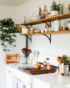 "2,634 Likes, 17 Comments - Apartment Therapy (@apartmenttherapy) on Instagram: ""Plants ✔️ Open shelves ✔️ Cute copper accents ✔️ Yup, this adorable kitchen has it all. (Image:…"""
