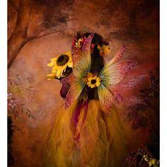 Autumn fairies ❤ liked on Polyvore