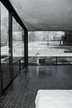 Philip Johnson's Glass House. donbrady
