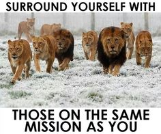Surround yourself with others on the Same mission as you