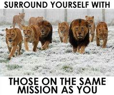 Omgeef jezelf met mensen die dezelfde missie hebben