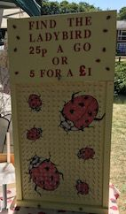 A simple fundraising idea is often the best. They dont come more simple than The Golden Egg. But it still makes a great stall at your fete. Fete Ideas, Fundraising Ideas, Great Pictures, Victoria, Education, Game, Holiday Decor, Simple, Summer