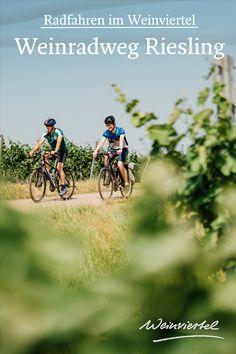 Der Weinradweg Riesling nimmt dich mit auf eine Reise durch die Zeit. Gestartet wird in Eggenburg. Bevor du dich auf dein Fahrrad wirfst, solltest du dir aber unbedingt die zur Gänze erhaltene Stadtmauer ansehen. Anschließend geht es radelnd durch die malerischen Kellergassen der Region, wo unzählige Heurigen auf ein gutes Gläschen Wein und eine Heurigenjause einladen. Schau dir den genauen Streckenverlauf an, schnapp dir dein Rad und erkunde das Weinviertel! © Weinviertel Tourismus… Radler, Bicycle, Travel, Bike Rides, Tourism, Explore, Wine, Bike, Viajes
