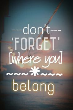 Don't Forget Where You Belong - One Direction