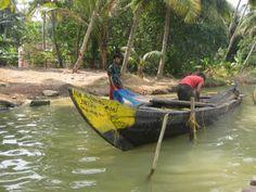 Homestay and Canoe tours from Munroe Island through the Ashtamudi Lake Backwaters. Duck Farming, Kerala Backwaters, Kerala Tourism, Best Model, Canoe, Boat, Tours, Island, Places