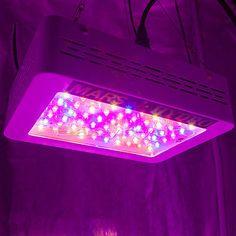 16 Best Glg Grow Lights Agricultural