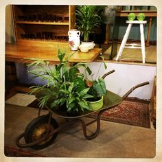 ANOUK offers an eclectic mix of vintage/retro furniture & décor.  Visit us: Instagram: @AnoukFurniture  Facebook: AnoukFurnitureDecor   October 2015, Cape Town, SA. Decoration, Boho, Facebook, Instagram, Retro Vintage, Decorating, Dekorasyon, Bohemian, Deko