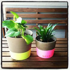 Easy- Make this for spring!   DIY painted pots