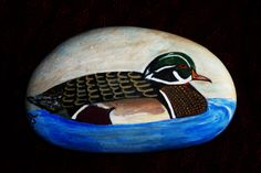 Painted Rock duck!