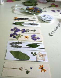 Create pressed flower bookmarks together