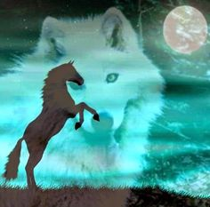 American Indian Art, American Indians, Native American, Dream Pictures, Wolf Pictures, Animal Spirit Guides, Spirit Animal, Wolfsbane, Wolf Moon