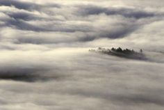 When taking photos either in, or of fog and mist, remember that the level of brightness is typically a stop or two above neutral grey. View from St Regis Mountain, Adirondack Park, NY. 1/250 seconds   ƒ/8   IAO 100   160mm