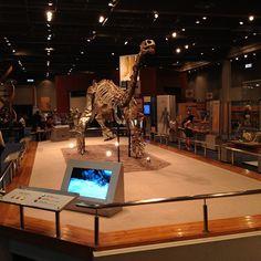 Dinosaur Theater Science Museum, Hong Kong, Theater, Space, Instagram, Design, Floor Space, Theatres, Teatro