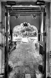 Boojum Tree's Hidden Gardens in Phoenix - Drew Brashler Photography Hidden Garden, Tree Wedding, Photo Tree, Phoenix, Photo Galleries, Gardens, Gallery, Photography, Photograph