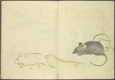 Mice, Nakamura Hochu, The Korin Album, 1802