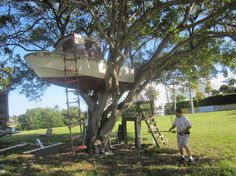 Image result for tree house sailboat