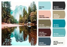 For our living room in our dream house. I ❤️ this color scheme