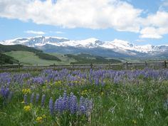 Big Horn Mountains, Wyoming - next summer to Mom and Dad's