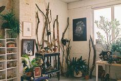 Moon to Moon: The art studio / home of ... Fia Cielen | branch decor, flora, urban jungle