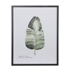 Mica Decorations Blad Poster 57 x 45 cm Country Decor, Cactus Plants, Plant Leaves, Sweet Home, New Homes, Retro, Beautiful, Home Decor, Little Cottages