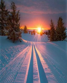 ❄️❄️❄️ #christmas #winter #snow #snowing #christmastree #christmaslights #xmas #christmaseve #christmasdecorations #merrychristmas
