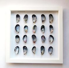 Large Mixed media Mussel Shell Picture