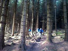Mountain Biking in the Wicklow Mountains, Ireland