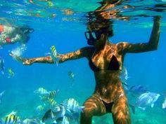 St. Maarten excursions - Captain Alan Three Island Snorkel Tour