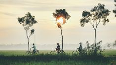 Your Vietnam trip starts here. Find Vietnam travel tips such as a Vietnam travel guide, places to visit in Vietnam, a Vietnam itinerary, what to do in Vietnam and so much more. Angkor Temple, Angkor Wat, Vietnam Voyage, Vietnam Travel, Hoi An, Battambang, Da Nang, Best Places To Travel, Adventure Travel