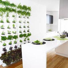Grüne Wand ▷ Raffinierter Blickfang Für Die Wohnung