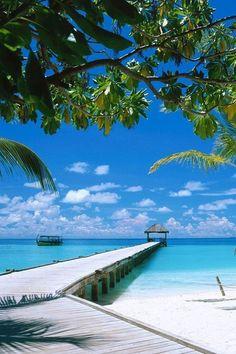 @ Malediven. Meer informatie, check: http://nl.wikipedia.org/wiki/Maldiven