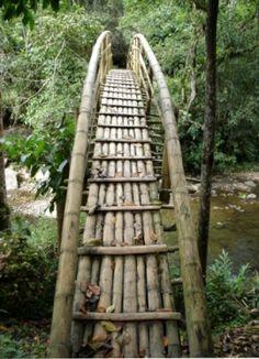 puentes indigenas en guadua - Buscar con Google Bamboo Art, Bamboo Crafts, Bamboo House, Bamboo Garden, Bamboo Architecture, Architecture Design, Bamboo Building, Bamboo Structure, Bamboo Construction