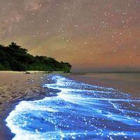 Sea Of Stars, Vaadhoo Island