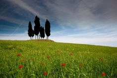 Tuscany, Italy, where you can #GoLearnToPhoto on a photography holiday
