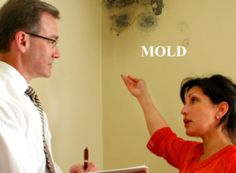 Wet season is one of the times for mold to grow and expand. Mold In Bathroom, New Bathroom Ideas, Restoration, Seasons, Water Damage, Bathroom Remodeling, Basement, Floor, Times