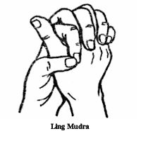 Protects against infections and to give happiness and emotional stability Hand Mudras, Reiki Room, Yoga Mantras, Reiki Chakra, Soul Healing, Qigong, Guided Meditation, Tai Chi, Ayurveda