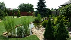 Beautiful garden in East Hungary
