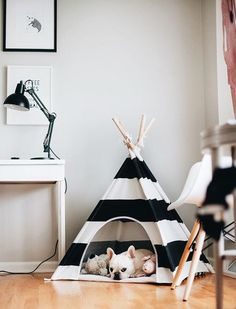 little dove Pet Teepee Dog House Toy Tent Dog Bed 24 Inch Black and White Strip Style (with Cushion) * Click image for more details. (This is an affiliate link and I receive a commission for the sales) Dog Place, Dog Rooms, Ideias Diy, Pet Beds, Puppy Beds, Dog Houses, Puppy House, Pet Accessories, Fur Babies