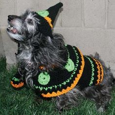 Google Image Result for http://www.favecrafts.com/master_images/Crochet/Dog-Witch-Costume.jpg